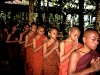 www-myanmar-rweber-monks