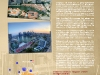 poster_megacities_sea-22